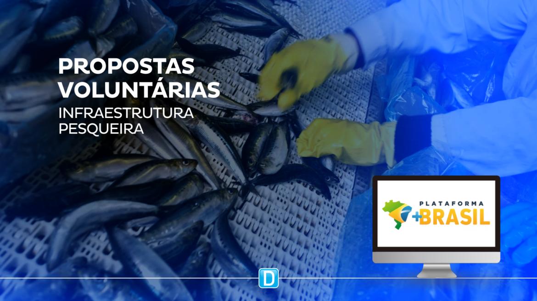 Desenvolvimento da Infraestrutura Pesqueira e Aquícola