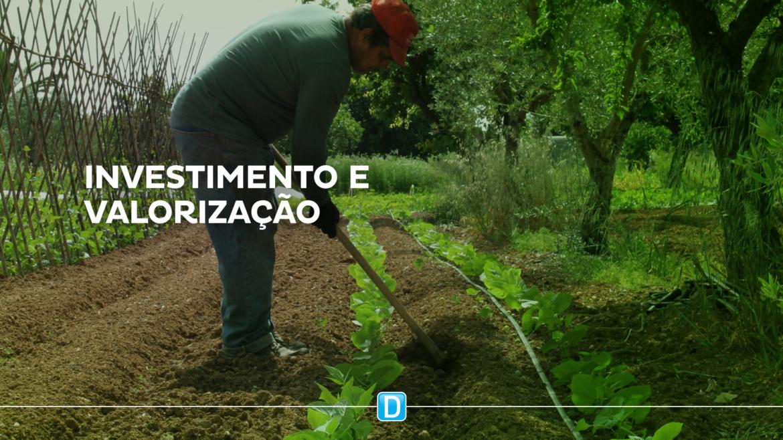 Chamada pública do Exército investe R$ 483 mil em produtos da agricultura familiar