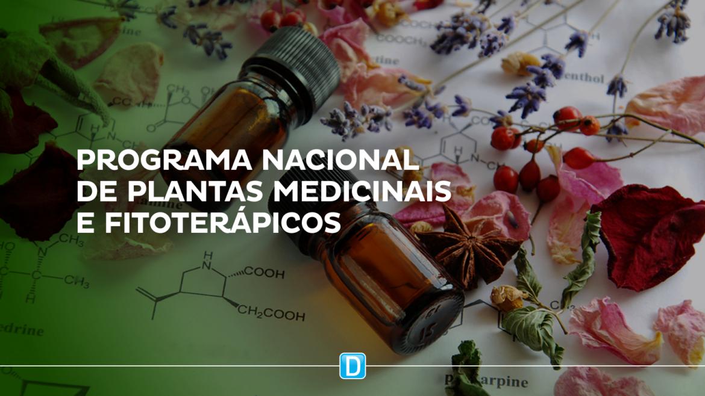 Ministério da Saúde seleciona projetos para Assistência Farmacêutica em Plantas Medicinais e Fitoterápicos