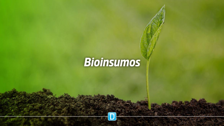 Produtores rurais buscam bioinsumos para reduzir custo da produção e aumentar rentabilidade