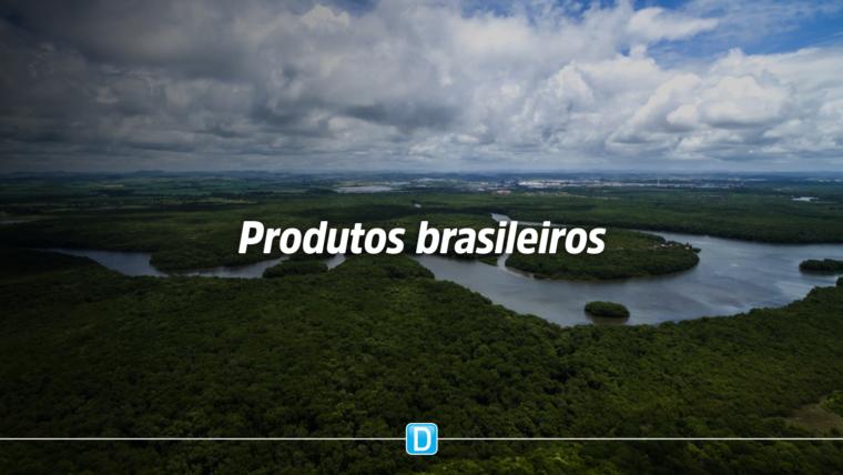 Produtos da sociobiodiversidade brasileira ganham destaque no Iufro 2019