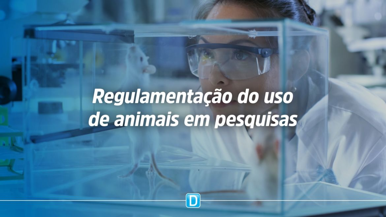 Concea determina uso de métodos alternativos em 17 tipos de testes com animais