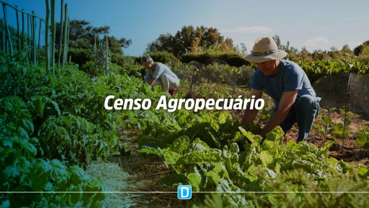 Agricultura familiar emprega mais de 10 milhões de pessoas, mostra Censo Agropecuário