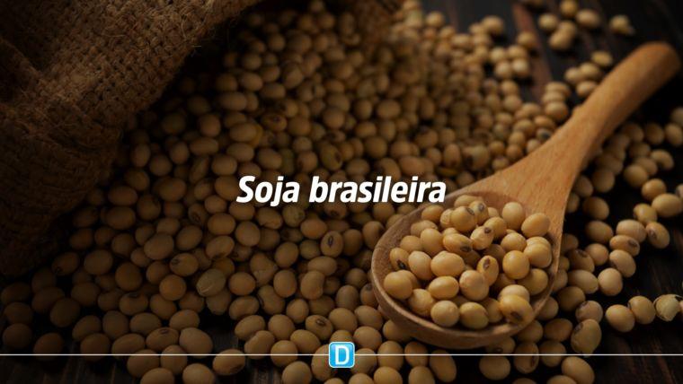 Ministra destaca importância de o Brasil vender produtos da soja com valor agregado