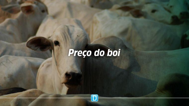 Dezembro se encerra com queda média de 15% na cotação da arroba do boi gordo