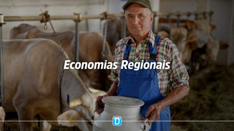 Fiscalização de produtos de origem animal por consórcios municipais deve impulsionar economias regionais
