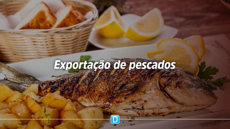 Brasil poderá exportar pescado para o Marrocos