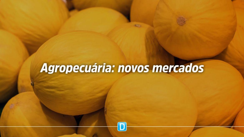 Brasil alcança abertura de 60 mercados para produtos agropecuários