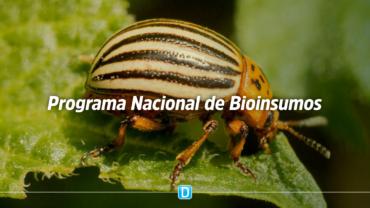 Lançamento do Programa Nacional de Bioinsumos