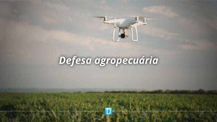 Regulamentação do uso de drones em atividades agropecuárias é colocada em consulta pública