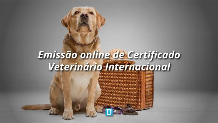 Certificado Veterinário para cães e gatos com destino à Argentina será eletrônico