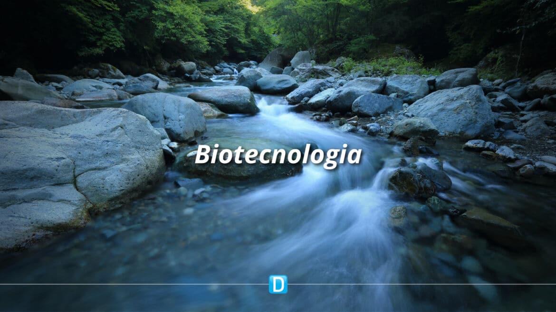 Chamada CNPq/MCTI vai apoiar soluções de biotecnologia para recuperação de rios e lagoas