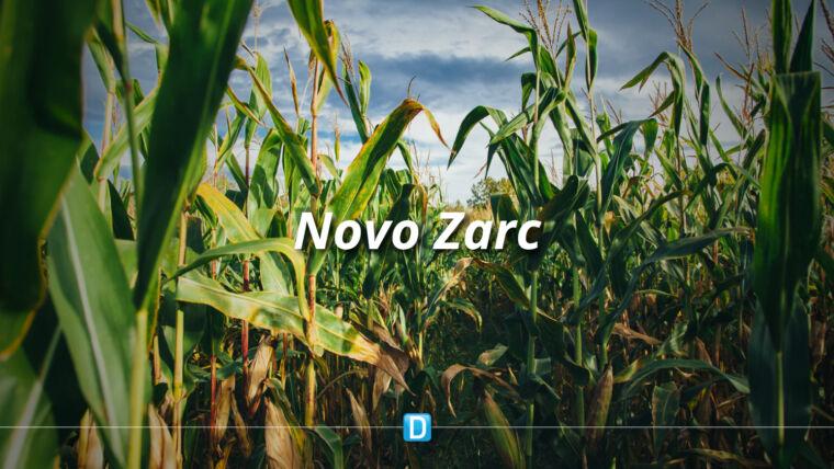 Novo Zarc traz mais segurança para milho de 2ª safra