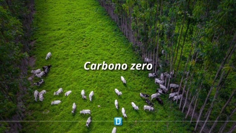 Brasil tem primeira linha de produtos carne carbono neutro