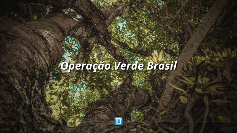 Operação Verde Brasil 2 ultrapassou R$ 520 milhões em aplicação de multas