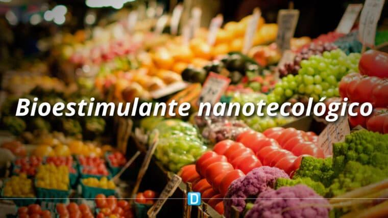 Bioestimulante nanotecnológico melhora desenvolvimento de hortaliças