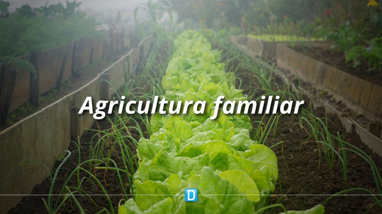 Governo destina R$ 25 milhões para programa de estímulo à agricultura familiar