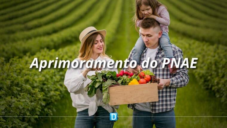 FNDE e Conab discutem implementação de políticas para aprimoramento do Programa Nacional de Alimentação Escolar (PNAE)