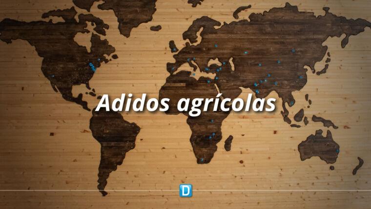 Brasil amplia o número de adidos agrícolas e fortalece atuação no exterior