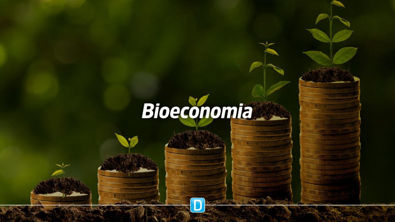 Mapa divulga projetos a serem financiados pelo Programa Bioeconomia Brasil – Sociobiodiversidade