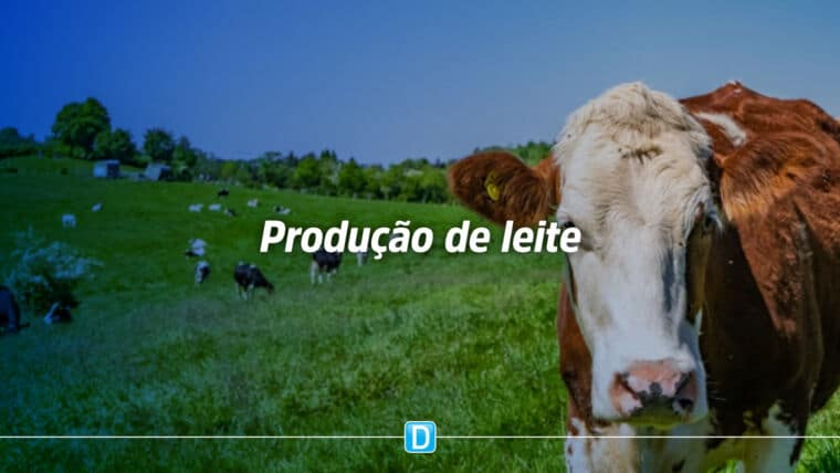 Planejamento forrageiro aumenta em 40% a produção de leite no RS