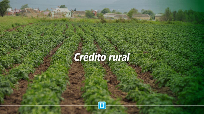 Contratações de crédito rural entre julho e novembro têm alta de 19%
