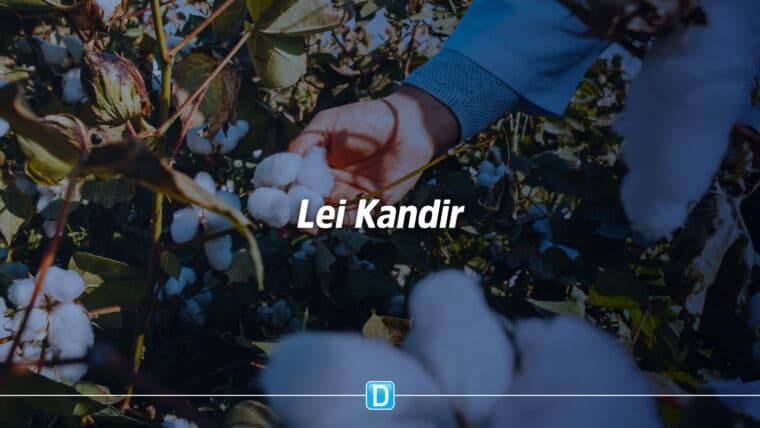 Sancionada lei que garante repasses para repor perdas com Lei Kandir