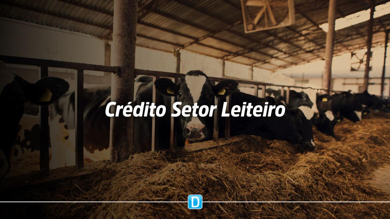 Para enfrentar crise, setor leiteiro tem novas medidas de financiamento e custeio