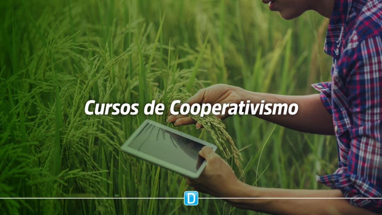Agricultores familiares podem se inscrever em cursos gratuitos de cooperativismo