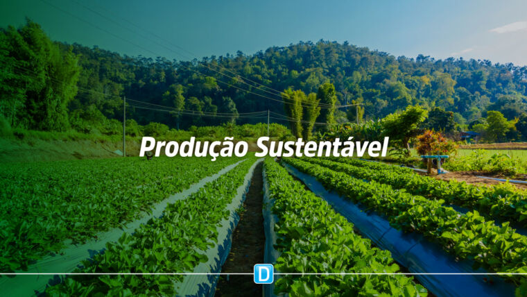 Programa ABC impulsiona crescimento de produção sustentável no país