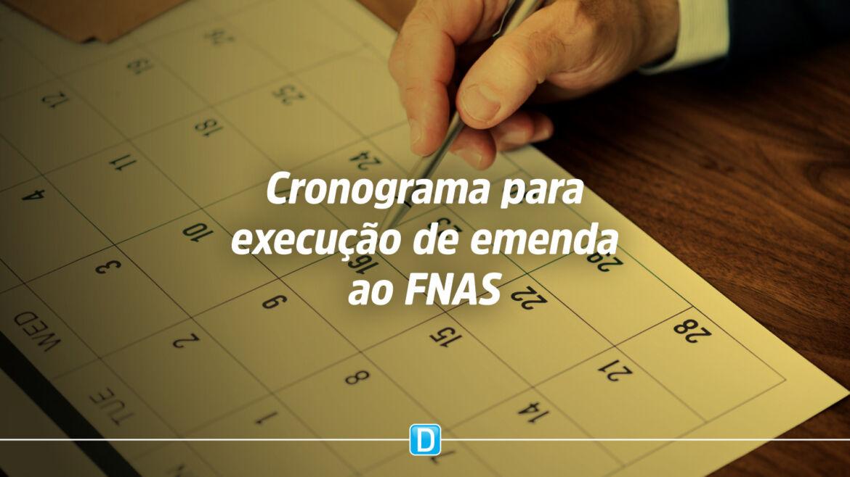 Cronograma para execução de emenda ao FNAS tem prazos finais em julho