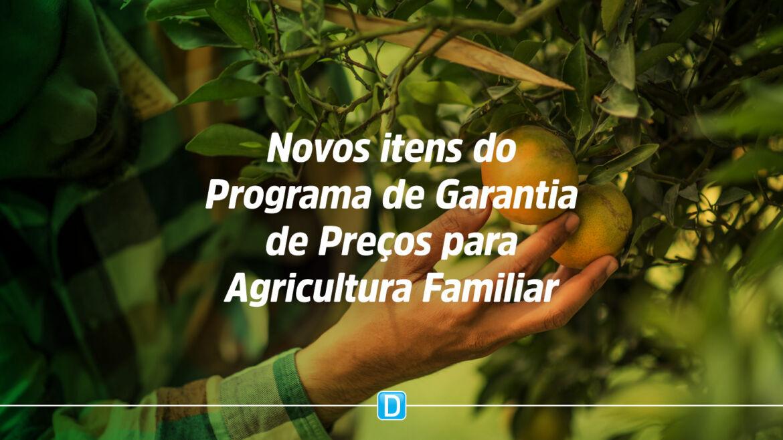 Agricultura Familiar: Programa de garantia de preços tem três produtos incluídos na lista em setembro